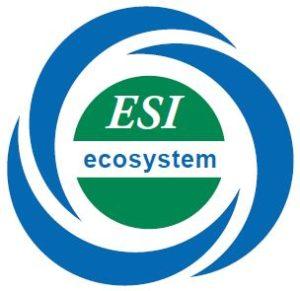 ESI Ecosystem - Innovation by ESI
